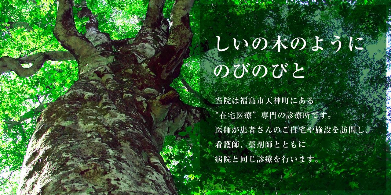 福島市 在宅医療専門の診療所 しいの木おうちクリニック(内科・緩和内科・外科・小児外科・小児科)